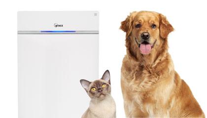 V domácnosti so zvieracími maznáčikmi čistíte vzduch kvalitnou čističkou vzduchu